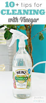Tons of Tips For Cleaning With Vinegar