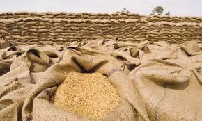 KP flour mills fear crisis as wheat stocks drop to 150,000 tonnes - Profit  by Pakistan Today