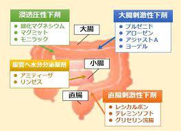 酸化 マグネシウム 効果 時間