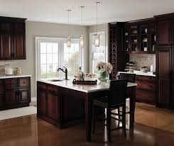 Small Picture Dark Cherry Kitchen with Glass Cabinet Doors Decora