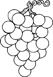 Coloriage Grappe De Raisins Gratuit Imprimer Coloriage De RaisinL
