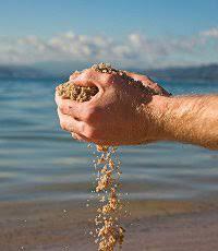 Resultado de imagem para grao de areia fotos