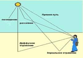 Влияние ультрафиолетового излучения на орган зрения человека  Механизм повреждающего действия ультрафиолетового излучения