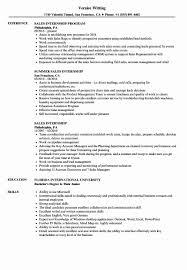 It Internship Resume Samples Resume Format For Internship New Sales Internship Resume
