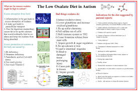 Oxalates Autism And More Powerful Patient