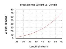 Musky Length Weight Chart Muskellunge Wikiwand
