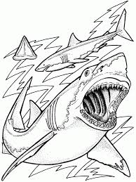 Small Picture Coloring Pages Ocean Coloring Pages Ocean Animals Coloring Pages