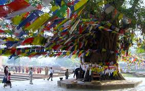 Image result for image of nepal tourist palace