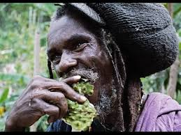 Rastafarian Encounter In The Canaan Mountains Jamaica YouTube Amazing Rastafarian