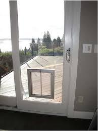pet door guys through glass doggy door pet door