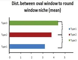 figure 7 histogram compares mean distance between oval window and round window niche for the three types the mean distance increases in type 2 and type 3