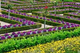 Small Picture Beautiful Vegetable Gardens Designs decorating clear