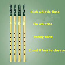 2019 <b>Irish Whistle Flute Feadog</b> C D Key Tin Whistle Irish Penny ...