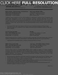 Sample Resume For Federal Government Job Resume For Study