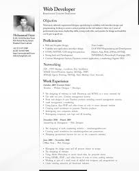 Wonderful Resume For It Professional For Cv Professional By