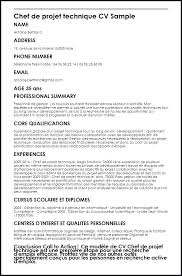 international format of cv resume or curriculum vitae chef template word international format