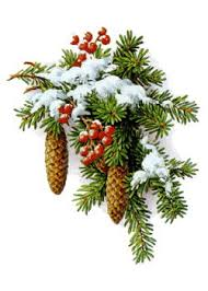 Výsledek obrázku pro vánoÄní obrázky