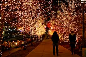 Life of Tracy: Temple Square Christmas Lights