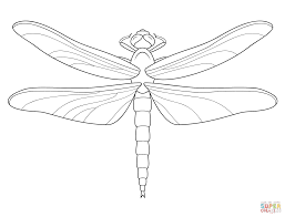 Small Picture Dragonfly coloring page Free Printable Coloring Pages