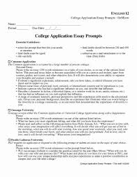 College Application Resume Resumes Objective Examples Skills