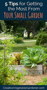 best garden vegetables. My Best Tips On How To Start A Small Vegetable Garden That\u0027s Bursting With Produce All Vegetables N