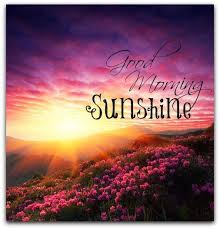 Good Morning Sun Quotes Best of Good Morning Sunshine Quote Quote Number 24 Picture Quotes