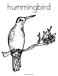 Small Picture hummingbird Coloring Page Twisty Noodle