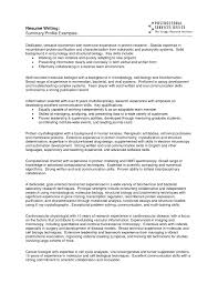 Resume Profile Samples Example Of A Resume Profile Resume For Study 33