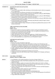 Web Services Developer Resume Samples Velvet Jobs