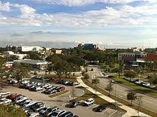 university of south florida overlooking the usf tampa campus