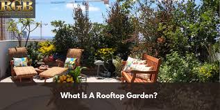 what is a rooftop garden rgb