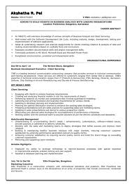 Business Analyst Resume Samples Examples Examples Of Resumes