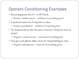operant conditioning essay question