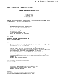 resume examples  information technology resume examples resume        resume examples  sample vp of information technology resume for objective with skills and work history