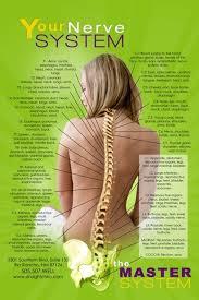Nerve Chart Chiropractic Health Chiropractic Back