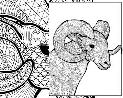 Small Picture ram sheep coloring sheet animal coloring pdf zentangle