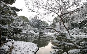 Best 51 Winter Garden Background On Hipwallpaper Cute