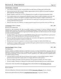 Vp Sales Sample Resume Executive Resume Writer For Vp Director