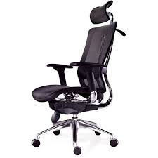best desk chair for back pain. Fine Back Best Desk Chair For Lower Back Pain Ergonomicofficechairbackpain In H