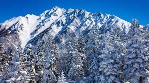 Foto Japan Nagano Natur Winter Gebirge Fichten Schnee 2560x1440