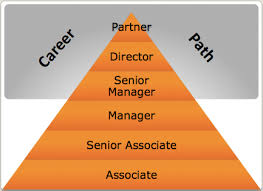 Organizational Complexity Pricewaterhousecoopers Llp Mba
