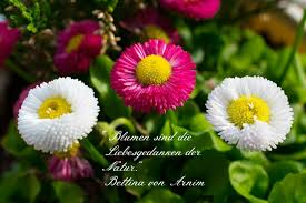 Garden Garten Spruche
