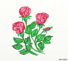 Red Roses Drawn By Child Felt Pen Buy This Stock Illustration And