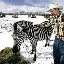 Utah breeder a rarity - Deseret News