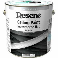 white ceiling paintResene Waterborne Flat  Ceiling Paint  Mitre 10