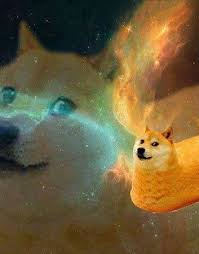 doge twinkie in space. Perfect Space Doge Twinkie In Space Space