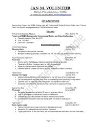 Writing An Effective Resume 17 Successful Sample Physical How To
