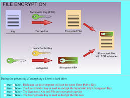 Solved During The Processing Of Encrypting A File On A Ha