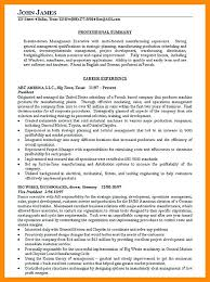 Examples Of Summaries For Resumes Professional Summary On Resume Examples Summary Resume Summary