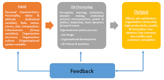 project analysis levels of organizational behavior input processing output system